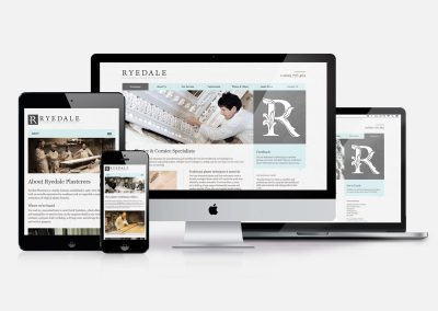 Ryedale Plaster Craftsman Website